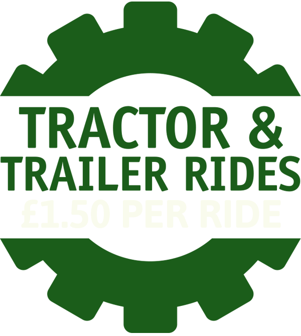tractor and trailor rides logo
