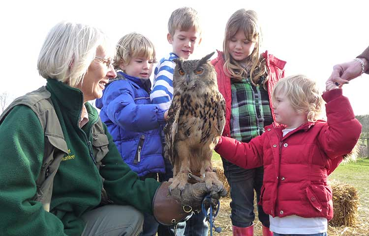 Children and Owl